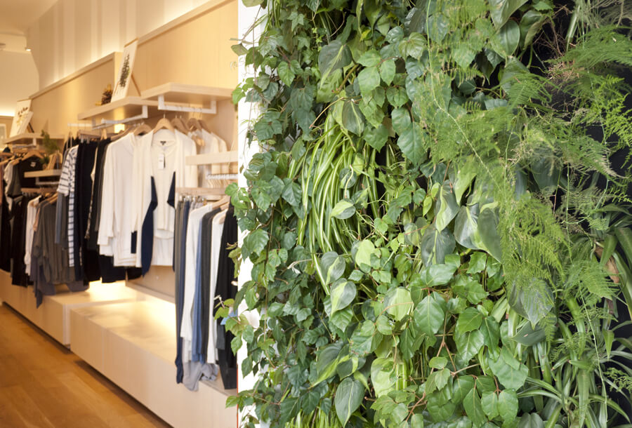 interior design ideas brooklyn green wall sprout home